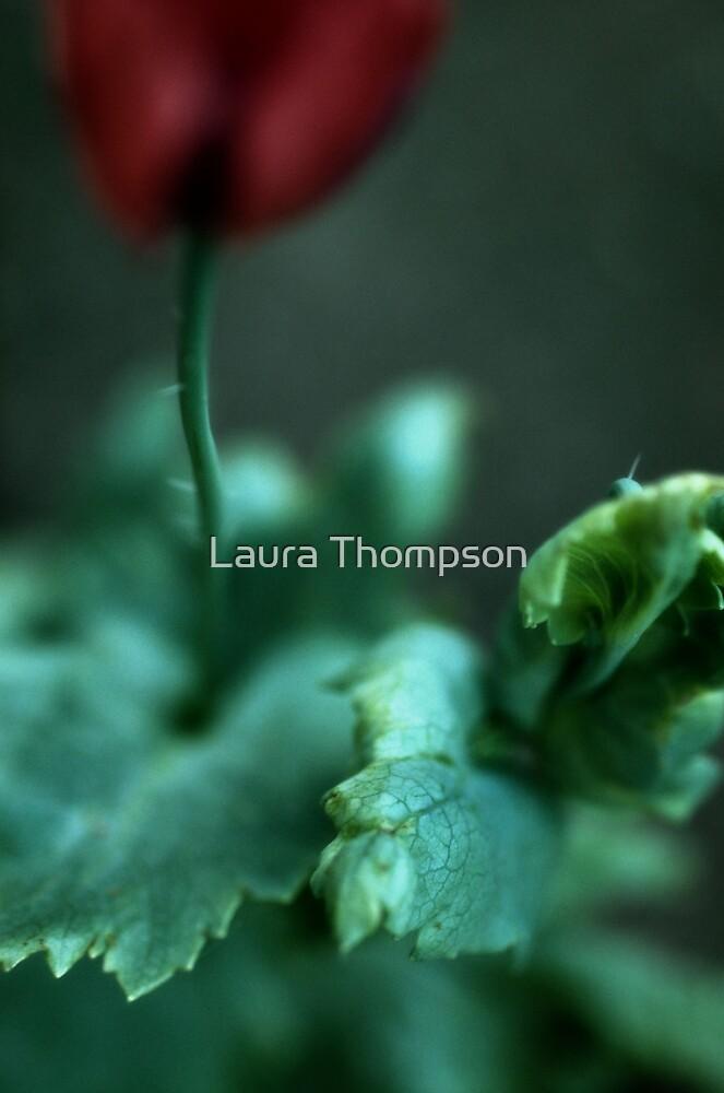 Opium by aesthetic221