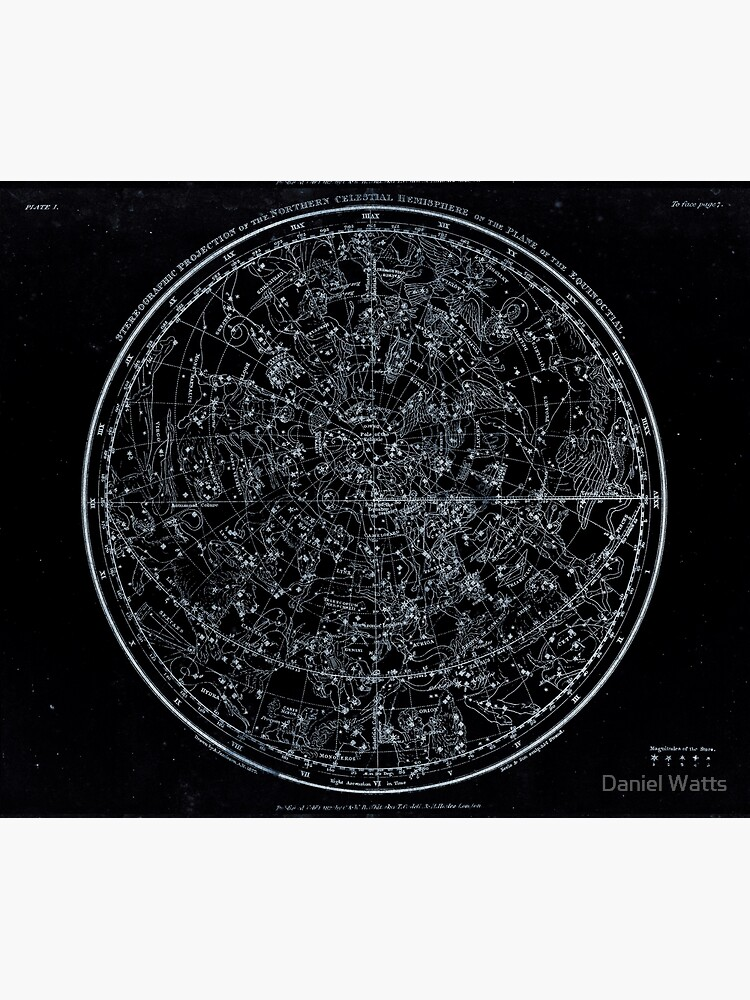 Constellations of the Northern Hemisphere | Pale Blue On Black by DanJohnDesign