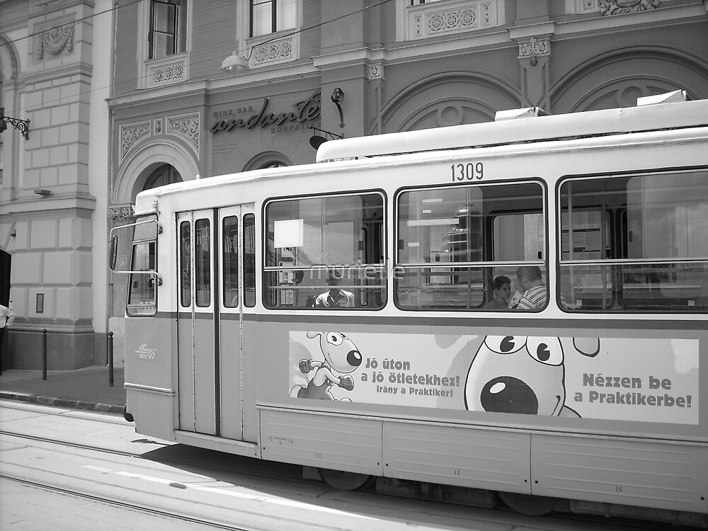 Tram in Budapest by murielle