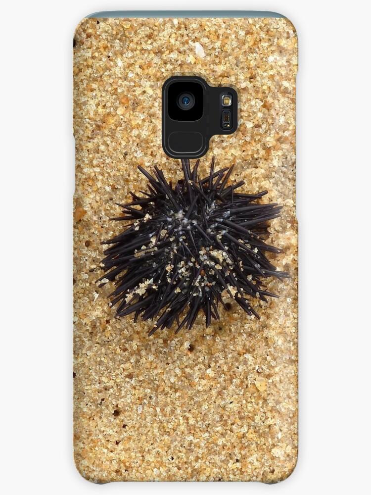 Urchin. Black urchin by Lovemydesigns