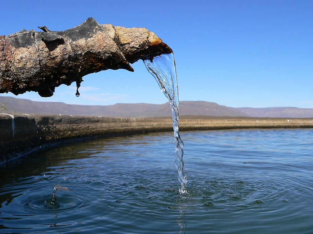 water from the earth by Douglas Freeman