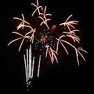 Fireworks - Vase of Flowers by Paul Gitto