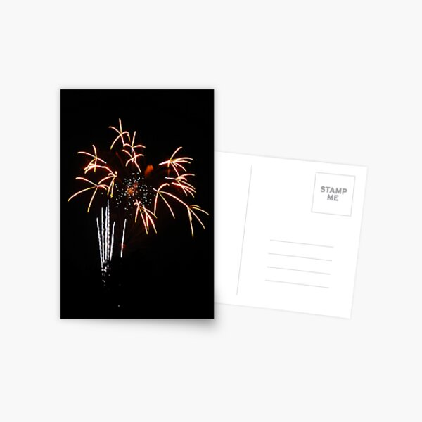 Fireworks - Vase of Flowers Postcard