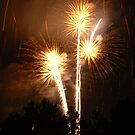 Fireworks - Palm Trees by Paul Gitto