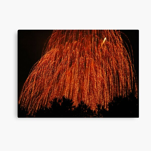 Fireworks - Weeping Willow Canvas Print