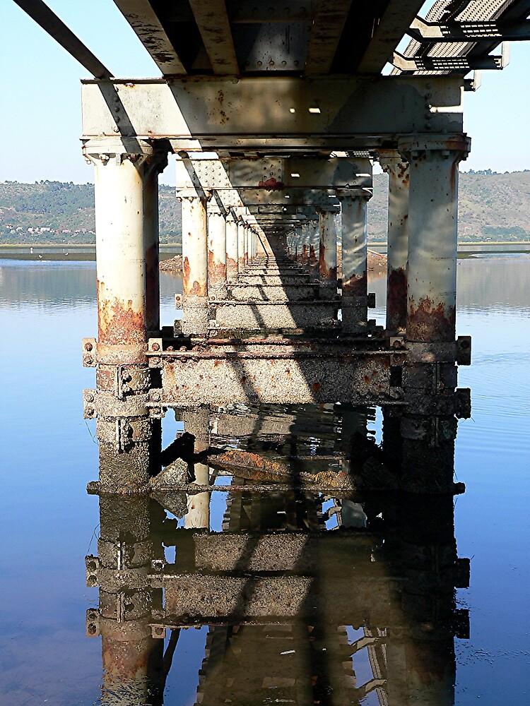 under the bridge by Douglas Freeman