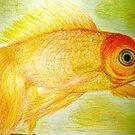 gold fish by MardiGCalero