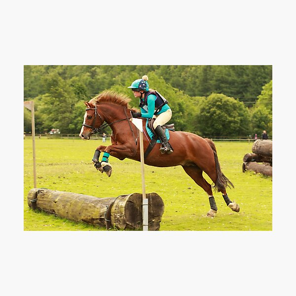 Brandy at Hunter Trials, 4th June 2017 Photographic Print