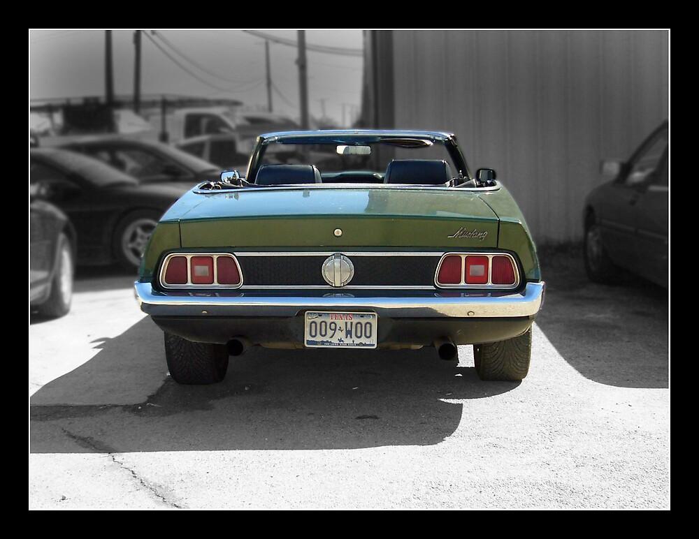 Mustang by JCR2