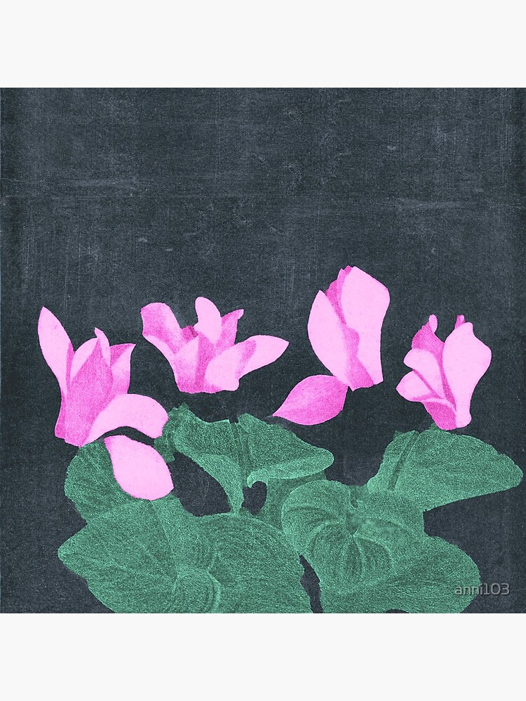 Cyclamen by anni103