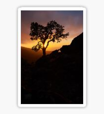 Silhouette at Sunset Sticker