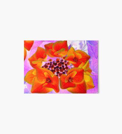 Glowing Hydrangea Art Board