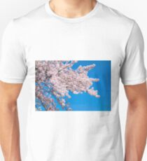 Cherry Blossoms. Pink flowers and blue sky T-Shirt