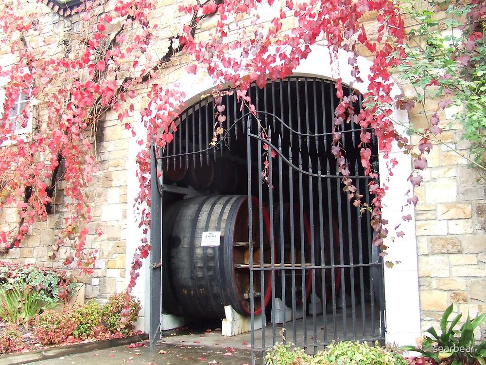 Cellar door at Chateau Yaldara SA by searbear