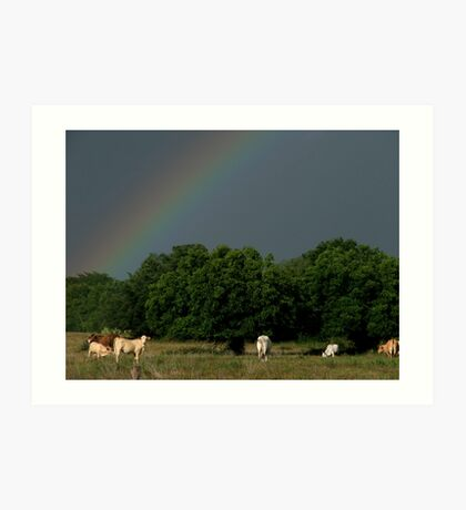 A Rainbow At Winedale Art Print