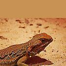 Horny Lizard by KazM