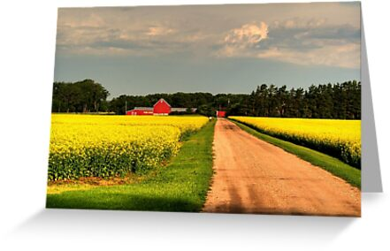 """""""Growing for Gold"""" by Larry Trupp"""