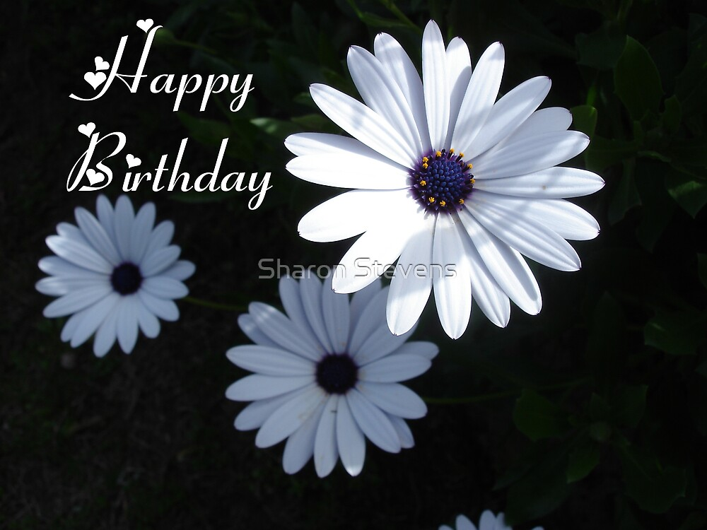 HAPPY BIRTHDAY by Sharon Stevens