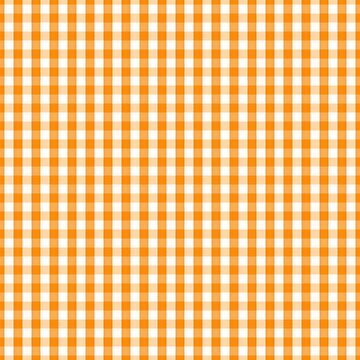 Pumpkin Orange and White Gingham Check by Creepyhollow