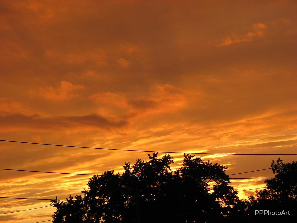 Orange Fire by PPPhotoArt