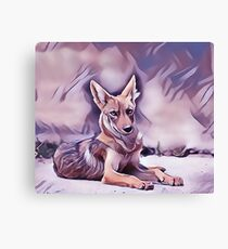 The Desert Coyote Canvas Print