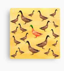 Different Duck Canvas Print