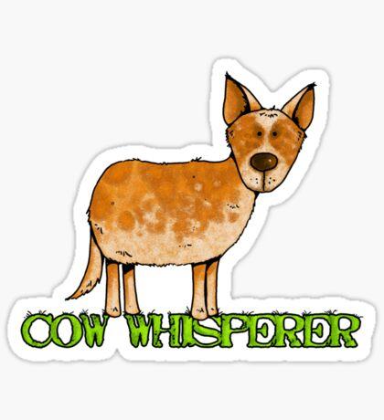 cow whisperer (red heeler) Sticker