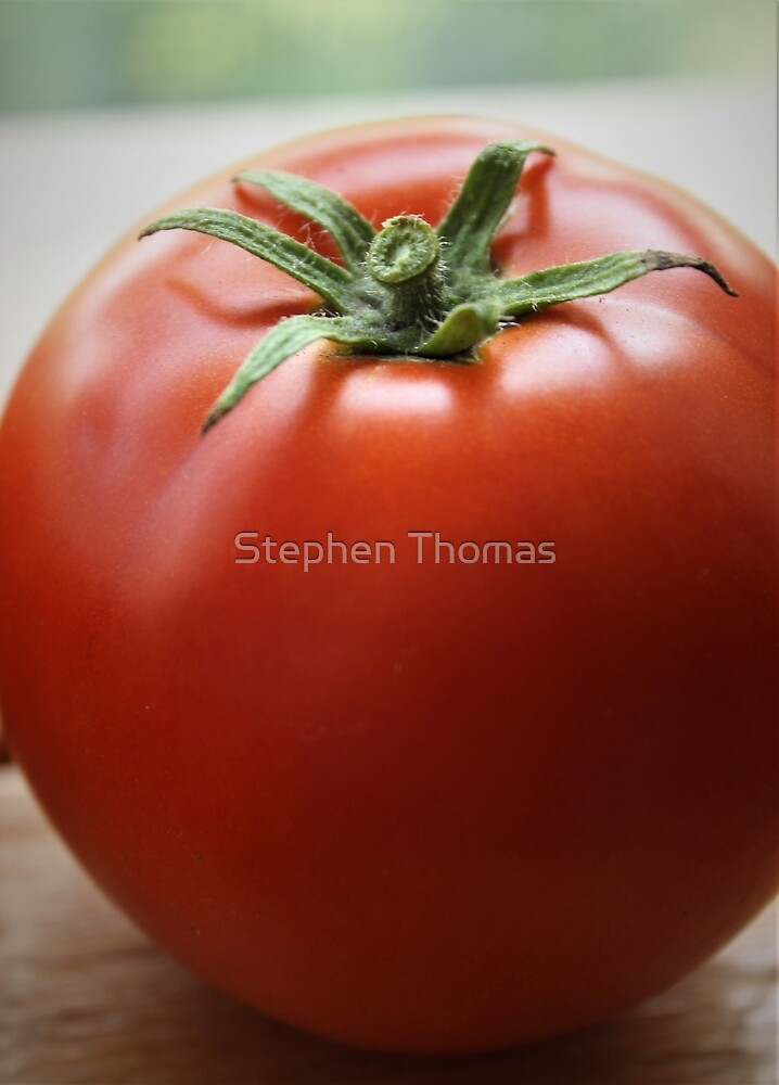 Garden Fresh Tomato by Stephen Thomas