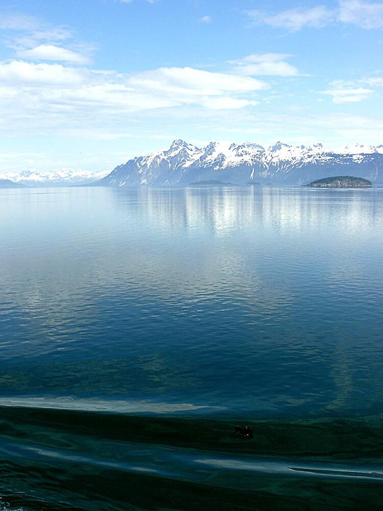 Alaska - Photo of the Ocean by Liz Wear
