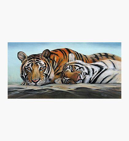Tiger Tiger Burning Bright Photographic Print