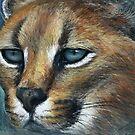 Lynx in pastel land by Tom Godfrey