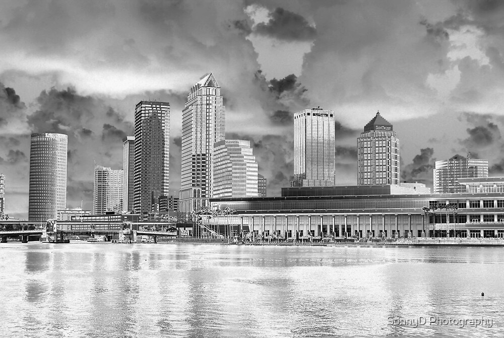 tampa bay digital by SonnyD Photography