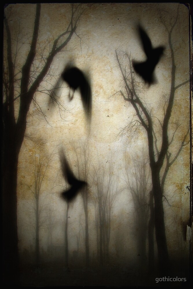 Magic Crows by gothicolors