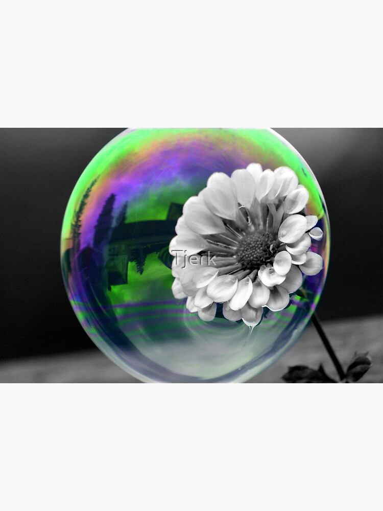 B&W Flower in a bubble by Tjerk