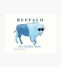 Buffalo- It's Cooler Here!  Print Art Print