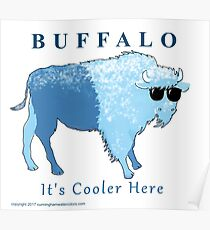 Buffalo- It's Cooler Here!  Print Poster