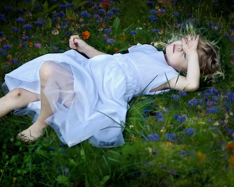 Stillness #8 by Jacqueline  Roberts