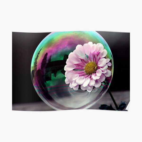Color flower in a bubble Poster
