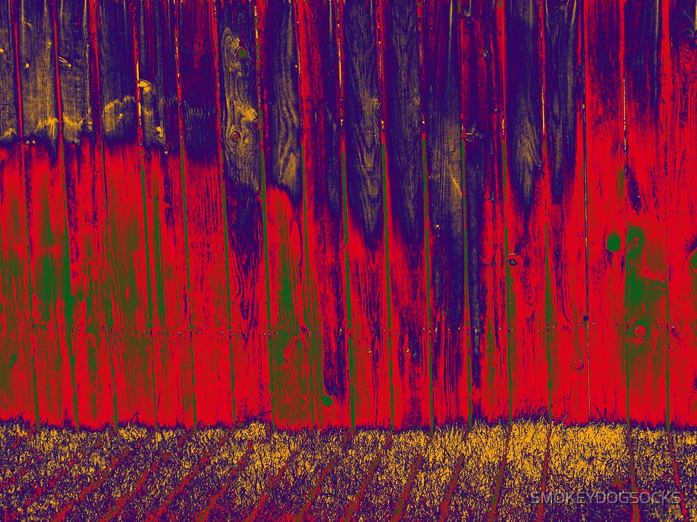 COLORFULL FENCE LINE by SMOKEYDOGSOCKS