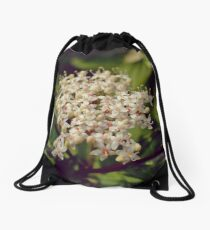 Red Osier Dogwood Blossoms Drawstring Bag