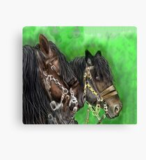 clydesdale Horses on this design for horses lovers Canvas Print