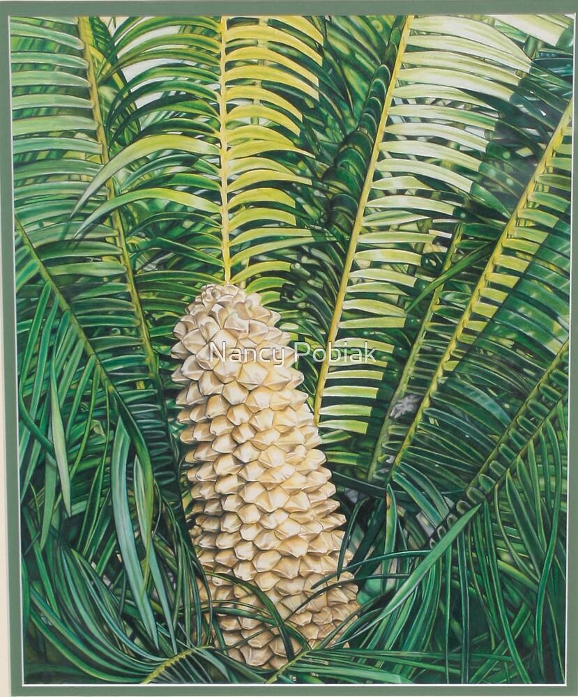 Dyune Spinulosa by Nancy Pobiak