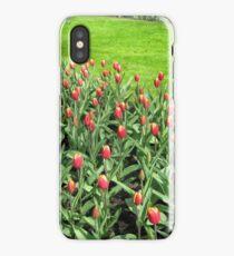 Triumphant Tulips - Keukenhof Gardens iPhone Case/Skin
