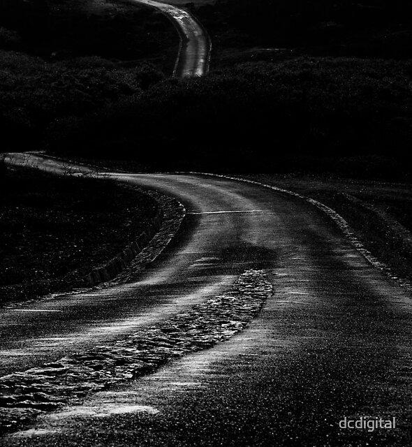 Long Winding Road  by dcdigital