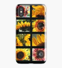 Sunflower Collage 2 iPhone Case/Skin
