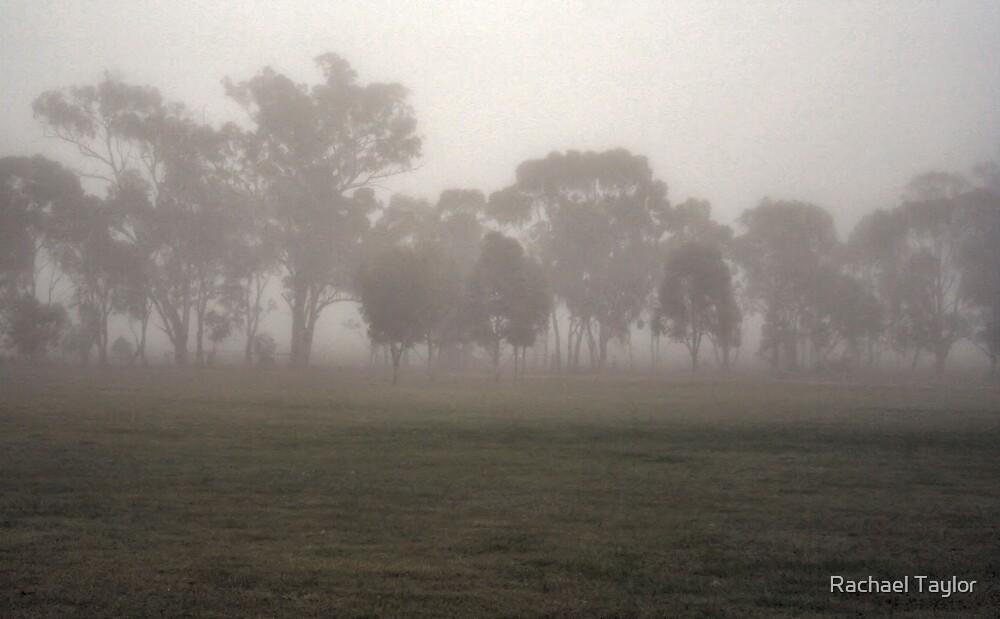 Farm Fog by Rachael Taylor