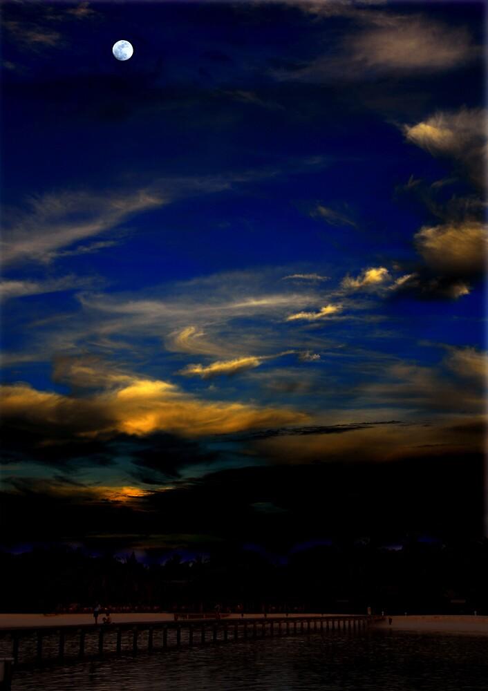 Moonlit Night by satwant