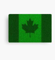 Grass flag Canada Canvas Print