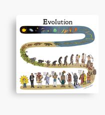 evolution Metal Print