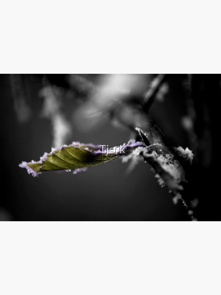 Leaf it by Tjerk